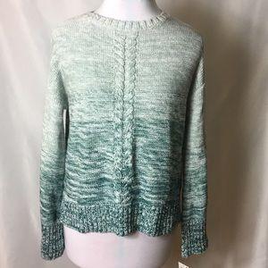 Style&Co green tweed sweater